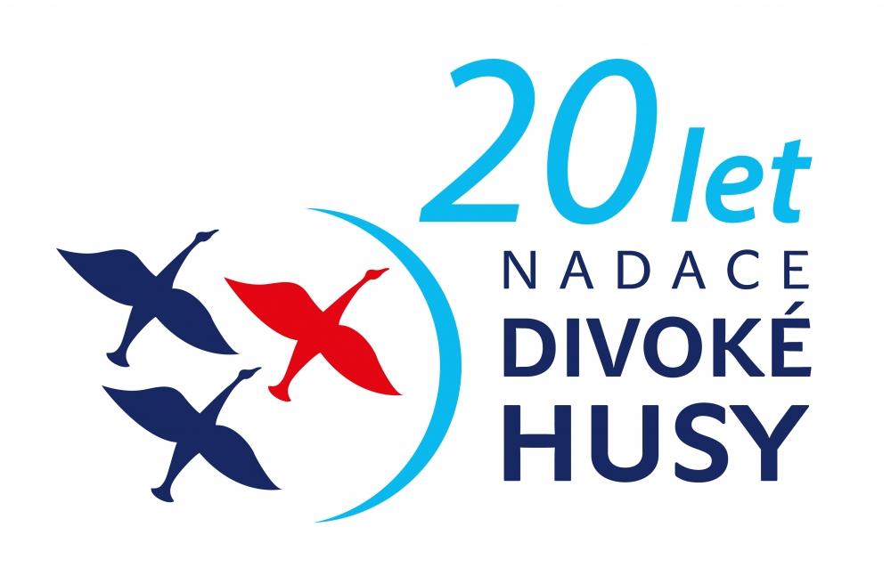 Divoké husy logo - Zkoleduj se