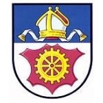 slavicin logo